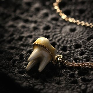 A Tooth (three roots) Charm Necklace by Defy - Painted Version