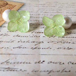 *Peridot*Hydrangea pierce and pearl catch