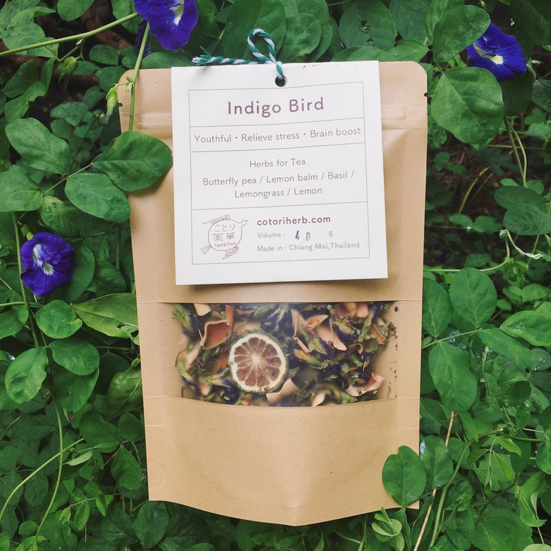 Indigo Bird - Beautiful blue bird tea-
