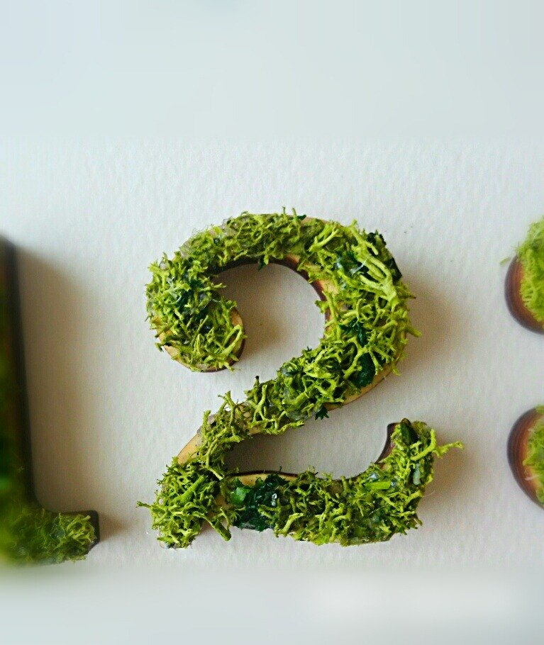 "Wooden numbers objects (Moss) 5cm ""2"" × 1 point"