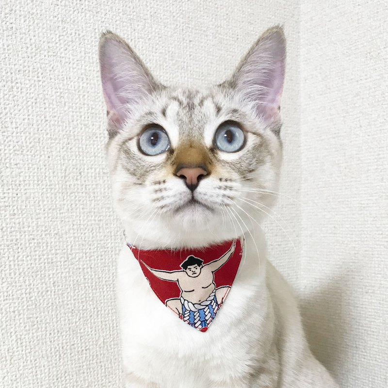 【Female pattern】 Cat for bandnan style collar to choose Safety buckle magazine published on NyAERA